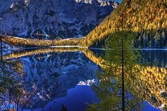 Luce e Ombra (giannipiras555) Tags: lago autunno riflesso landscape natura braies trentino alba sole