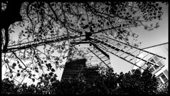 Montmartre / Монмартр (dmilokt) Tags: город city town пейзаж landscape сад парк garden park dmilokt чб bw черный белый black white
