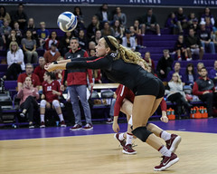 Stanford Washington-FT4I5902 (Pacific Northwest Volleyball Photography) Tags: volleyball ncaa stanford washington uwhuskies pac12 pac12vb