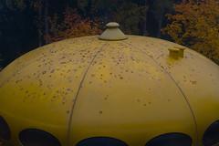 Futuro In Fall (pni) Tags: futuro prefabricated house fiberglass autumn tree leaf foliage flyingsaucer emma espoomuseumofmodernart espoonmodernintaiteenmuseo esbomodernakonstmuseum espoo esbo finland suomi pekkanikrus skrubu pni mattisuuronen