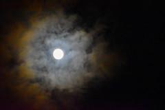 The Long Night Moon (Jane Olsen) Tags: moon celestialbody astronomy outdoor dark night sky clouds alberta canada winter