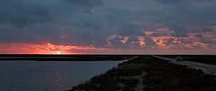 El Delta del Ebro, Playa del Trabucador (angelalonso4) Tags: canon eos 6d ef50mm f18 stm ƒ50 500 mm 150 100 playa del trabucador delta
