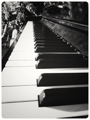 It doesn't matter if you're black or white #piano #instrument #detail #details #lovedetails #blackandwhite #blacknwhite #bnw #bw #bws #noir #monochrome #zwartwit #colorless #bnwphotography #lovephotography #photographer #photography #fotograaf #fotografie (Chantal vander Reijden) Tags: colorless blacknwhite zwartwit instrument bnw inside lovephotography piano fotografie fotograaf blackandwhite bw monochrome noir bnwphotography details photographer detail travel lovedetails photography bws