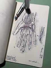 Study of a hand - Leonardo Da Vinci (schunky_monkey) Tags: fountainpen penandink ink pen medicaldrawing journal illustration art drawing draw bones hand anatomy sketchbook sketching sketch artist master leonarddavinci davinci