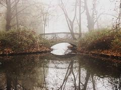 misty bridge (Darek Drapala) Tags: misty bridge brown nature panasonic poland polska panasonicg5 park reflection reflects autumn lumix light warsaw warszawa water waterscape