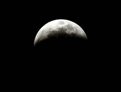 Lunar Eclipse (AtomicMush a.k.a. gary) Tags: lunar eclipse bloodmoon wolfmoon moon