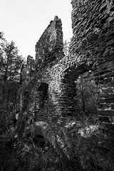harrisville ruins (primemundo) Tags: mccartyville harrisville ghosttown bassrivertownship burlingtoncounty nj abandoned papermill ruins bricks bw monochrome