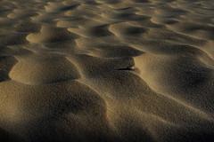 Sand (Manuel Chagas) Tags: sand areia mft m43 microfourthirds leica panasonic lumix summilux 25mm f14 baleal peniche portugal praia beach em1 omd olympus manuelchagas