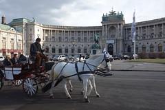 DSC04060 (dbohaty) Tags: wien vídeň austria viena rakousko ostereich