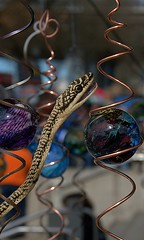 Mobiles & Reptiles (Scott 97006) Tags: snake reptile head mobile balls art unique different illusion
