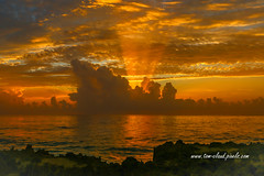 Orange Sun Rays (tclaud2002) Tags: sun sunrise clouds cloudy weather seascape water ocean atlantic atlanticocean coast coastal seashore seaside rocksbeach sand hutchinsonisland nature mothernature outdoors stuart florida usa
