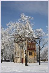 Serbia - Palić - Owl's Castle (ottilia dozsa) Tags: tree fa snow serbia srbija szerbia palić palics castle vermes vojvodina bačka bacska ho kastely vajdasag winter tel ycabb