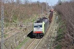 In trincea... (Minitour) (Maurizio Zanella) Tags: treni trains ferrovia railways cti captrain bls re486507 tec64309 tec41609 italia alessandria sgiacomo