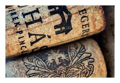 Corks (pusiga) Tags: macromondays hobby hungary macro cork wine bottle