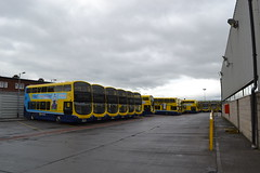 Dublin Bus SG137 152-D-17793 - SG291 172-D-21200 - SG141 152-D-17799 - SG299 172-D-19516 - SG12 142-D-12037 - SG307 172-D-21002 (Will Swain) Tags: dublin phibsboro depot 16th june 2018 bus buses transport travel uk britain vehicle vehicles county country ireland irish city centre south southern capital sg137 152d17793 sg291 172d21200 sg141 152d17799 sg299 172d19516 sg12 142d12037 sg307 172d21002 sg 307 291 137 141 299 12