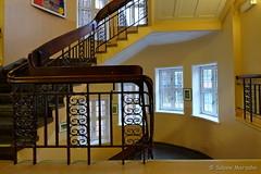 Sonnentreppe (Sockenhummel) Tags: badsegeberg gemeinschaftsschule schule treppe treppenhaus stairway staircase stairwell escaliers fuji xt10 architektur architecture geländer handlauf railing fenster