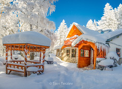 Home in the winter forest (Toni Terziev) Tags: 500px home bulgaria beautiful huts mountains mountain vitosha landscape landscapes winter snow