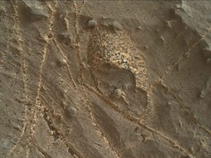 Not a Thark Egg on Mars 1 (sjrankin) Tags: 2november2018 edited nasa mars msl curiosity galecrater closeup dust sand vein lightcolored speckled rocks 2217mh0007630030803012e01dxxx