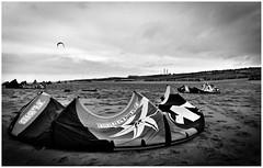 Start me up (LeonardoDaQuirm) Tags: maasvlakte rotterdam beach sea northsea blackwhite kite kitesurfing kiteboarding netherlands
