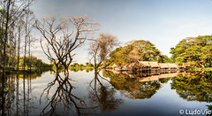 Maison de campagne Cambodgienne (Lцdо\/іс) Tags: cambodge cambodia campagne countryside travel reflection reflexion reflet water kamboscha asia asian asie trip tree discover explore flickr voyage novembre november 2018 lцdоіс chalet maison cabane