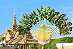 Preah Thineang Chan Chhaya - Moonlight Pavilion (adamsgc1) Tags: royalpalace phnompenh cambodia preahthineangchanchhaya moonlightpavilion palmtree spire