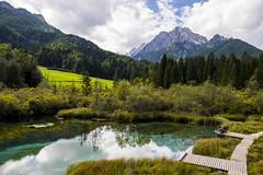 Zelenci natural reserve (Martin Rohan) Tags: zelenci naturalreserve alps lake mountain slovenia kranjskagora