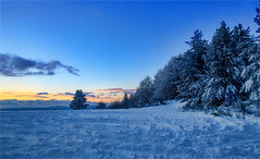Quando (Gio_guarda_le_stelle) Tags: cool winter sila trees frozen sunset italy snow pinodaniele massimotroisi neve ghiaccio snowscape