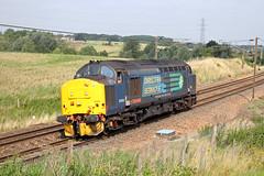 37419 (DennisDartSLF) Tags: brantham train 37419 class37 drs directrailservices