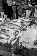 Seattle-1338 (Yale Gurney Pictures) Tags: ferriswheel ferry fish landmark photo photography pike pikemarket pikeplacemarket pugetsound seattle spaceneedle yalegurney washington usa