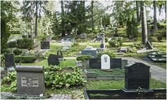 164-DETALLE DEL CEMENTERIO DE ANTAKALNIS - VILNIUS- LITUANIA - (--MARCO POLO--) Tags: cementerios ciudades rincones curiosidades