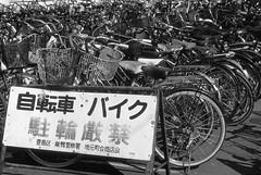 2/4 Bike parking strictly forbidden (lebre.jaime) Tags: japan tokyo sugamo 日本 東京 巣鴨 bicycle bike parking nikon f4 nikkor3514 blackwhite bw pb pretobranco noiretblanc analogic film film135 smallformat