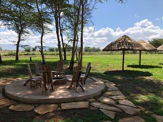 Africa Safari Lake Manyara surroundings