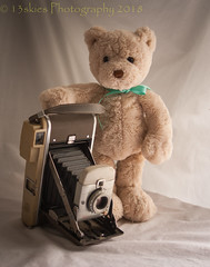Checking Out The Camera (HTBT) (13skies) Tags: happyteddybeartuesday older filmcamera polaroid fun pose htbt portrait