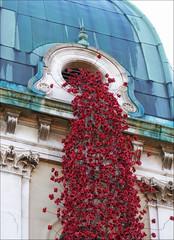 Weeping Window (jo92photos) Tags: window weepingwindow art installation artinstallation sculpture poppies red redandgreen london imperialwarmuseum remembrance cascade