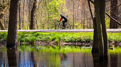 Rocky River Reservation Spring 2016 (american-trails) Tags: bicycle bike biking manonbike summerrecreation springrecreation rockyriverreservation spring 2016 trees water reflections swamps swamp rockyriver fishing flyfishing tree recreation summer clevelandmetroparks
