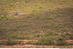 Missão C-SAR - CRUZEX 2018 (Força Aérea Brasileira - Página Oficial) Tags: 2018 brazilianairforce csar fab forcaaereabrasileira forçaaéreabrasileira fotobiancaviol h36caracal jtec resgate
