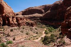 Pritchett Canyon... 20140513_2596 (listorama) Tags: pritchettcanyon usa utah moab canyon tombstoneplateau