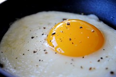fried-egg (rodrigodiastome40) Tags: