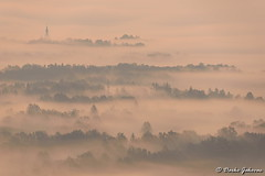 Misty morning view (darko.jakovac) Tags: nikon d750 nikond750 sigma 150600 sigma150600 contemporary telephoto dolenjska slovenija slovenia slowenien discover explore trip travel traveling relax view viewpoint ngc season outdoor outdoors outside hiking adventure perspective activities roam visit environment explorers ecological nature landscape scenery scenic idyllic beauty beautiful seasonal unique perfect superb magnificient stunning impressions outstanding popular colors colorful postcard wallpapper countryside mist misty morning forest church tree magic bright light day optimism freedom vibrant