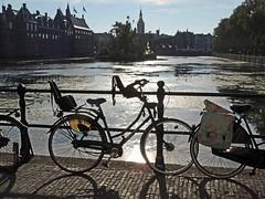 Autumnlight (Shahrazad26) Tags: hofvijver denhaag sgravenhage thehague lahaye binnenhof zuidholland nederland holland thenetherlands paysbas fietsen bicyclettes bicycles fahrräder