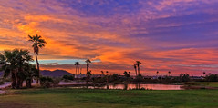 Beautiful Panoramic Sunrise (http://fineartamerica.com/profiles/robert-bales.ht) Tags: arizona foothills forupload haybales people photo places projects states sunsetorsunrise sunset sunrise golden red lake pond yuma palmtree weeds reflection silhouette spectacular awesome magnificent peaceful serene surreal sublime spiritual inspiring inspirational evening relaxing unitedstates panoramic southwest trees twilight wow dramatic emotion environment desert sunrays sky yellow nature outdoor water colorful sun dawn horizontal tranquil exotic orange mountain robertbales gilamountains