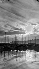 November Evening Masts (sswj) Tags: monochrome blackandwhite bw harbor halfmoonbay masts boatharbor evening nearsunset availablelight existinglight scottjohnson leica dlux4 composition reflection pacificcoast northerncalifornia abstractreality viewfullscreen