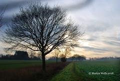 Winters Walk (Herb287) Tags: nikon d60 essex essexwalks landscape tree farming winter walks clouds fields unlimitedphotos theamateursgroup ngc