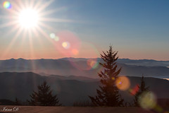 Star of the day (Irina1010) Tags: sun rays flare mountains smokeymountains clingmandome sunrise tree layers nature landscape canon ngc npc
