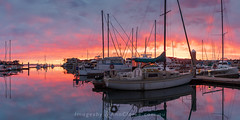 Glory (Images by Ann Clarke) Tags: australia eyrepeninsula marina nisifilter nov2018 panorama portlincoln sunrise yachts southaustralia au