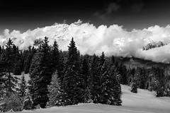 """Landscape"" (helmet13) Tags: d800e raw bw landscape nature mountains sky clouds sunshine silence alps altoadige italia snow winter snowline aoi peaceaward world100f"