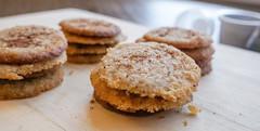 2018.12.15 Spiced Walnut Cookies and New CGM Sensor, Washington, DC USA 09147