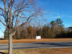 Empty Christmas Tree Lot. (dccradio) Tags: lumberton nc northcarolina robesoncounty southeastern fitnesscenter paved pavement road street tree trees treebranch treebranches branch branches treelimb treelimbs shadow sky bluesky outdoor outdoors outside nature natural grass lawn ground shed storage landscape december morning goodmorning tuesday tuesdaymorning winter samsung galaxy smj727v j7v cellphone cellphonepicture