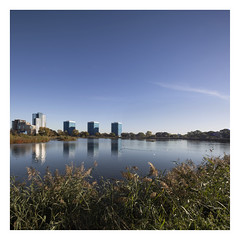 Woodberry Wetlands Broad Perspective (www.davidrosenphotography.com) Tags: woodberrydown landscape lake london sky urban woodberrywetlands nature