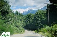 _DSC6359 (Rutas Patagónicas) Tags: patagonia rutaspatagónicas ruta 231 lago yelcho región de los lagos agenciaschaefer